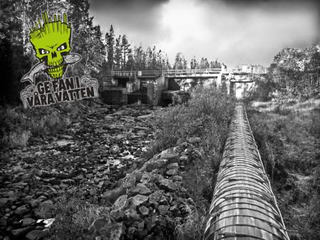 Fria vattenvägar i Gnarpsån